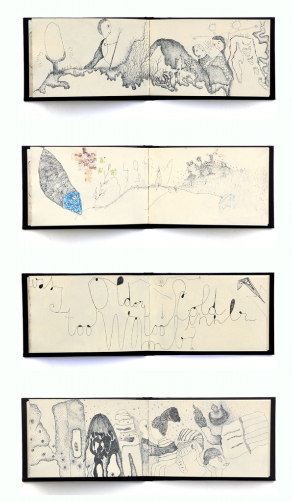 carnet_pages